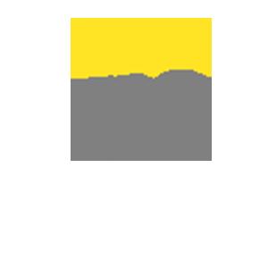 ernst young logo